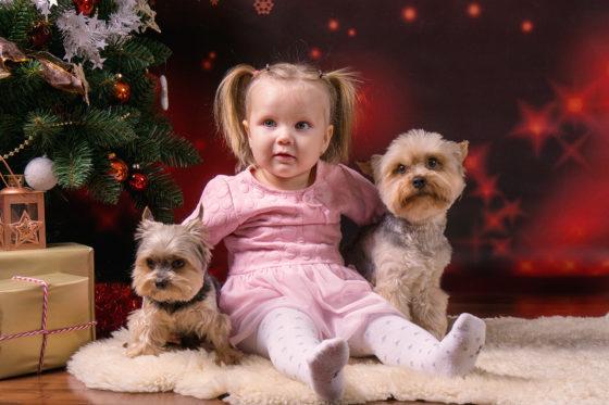 Vánoční focení